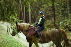 Tihuse horse-riding & farmstead stay