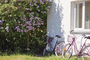 Sadama Guesthouse bike hire on Kihnu