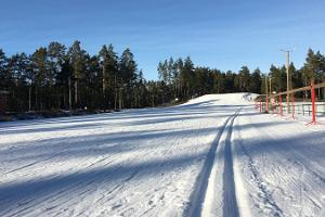 Skiing (hiking) trails and ski rental at Jõulumäe Sports and Recreation Center