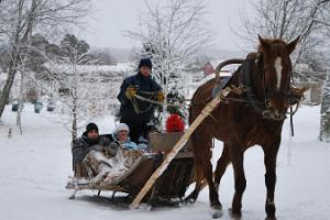 Sleigh ride in the wintery nature at Pärnu County