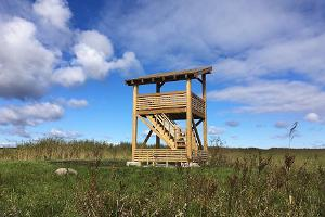 Vihasoo birdwatching tower