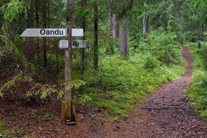 Oandu-Võsu hiking trail
