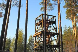 Liipsaare observation tower
