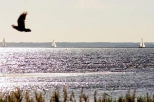 Sailing with friends on Pärnu Bay