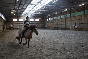 Maria Farm Riding Centre