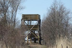 Penijõe bird observation tower