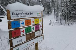 Ebavere Sports Centre ski tracks