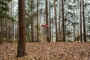 Disc golf at Paunküla Wellness Centre