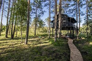 Sambliku Treehouse