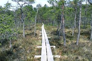 Kakedaja bog, hiking trail