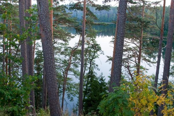 Discovering Kõrvemaa, the hiking Mecca of Estonia, on your own