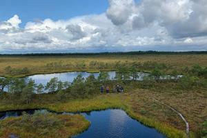 "One day nature tour ""Picturesque wilderness in Marimetsa bog"""