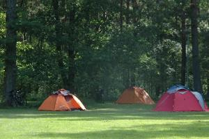 The camping ground under the Voosemetsa oak trees