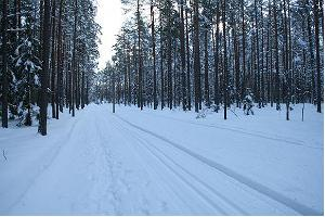 Kubija skiing tracks