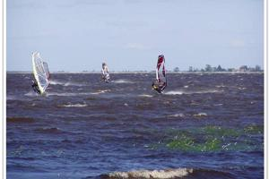 Windsurfing on Räpina beach