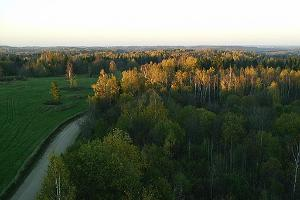 View from Harimägi Viewing Tower